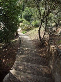 steps to cabanon (1 of 1)