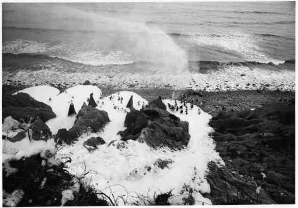 Foam at Montauk Point, Sunday, August 7, 1966