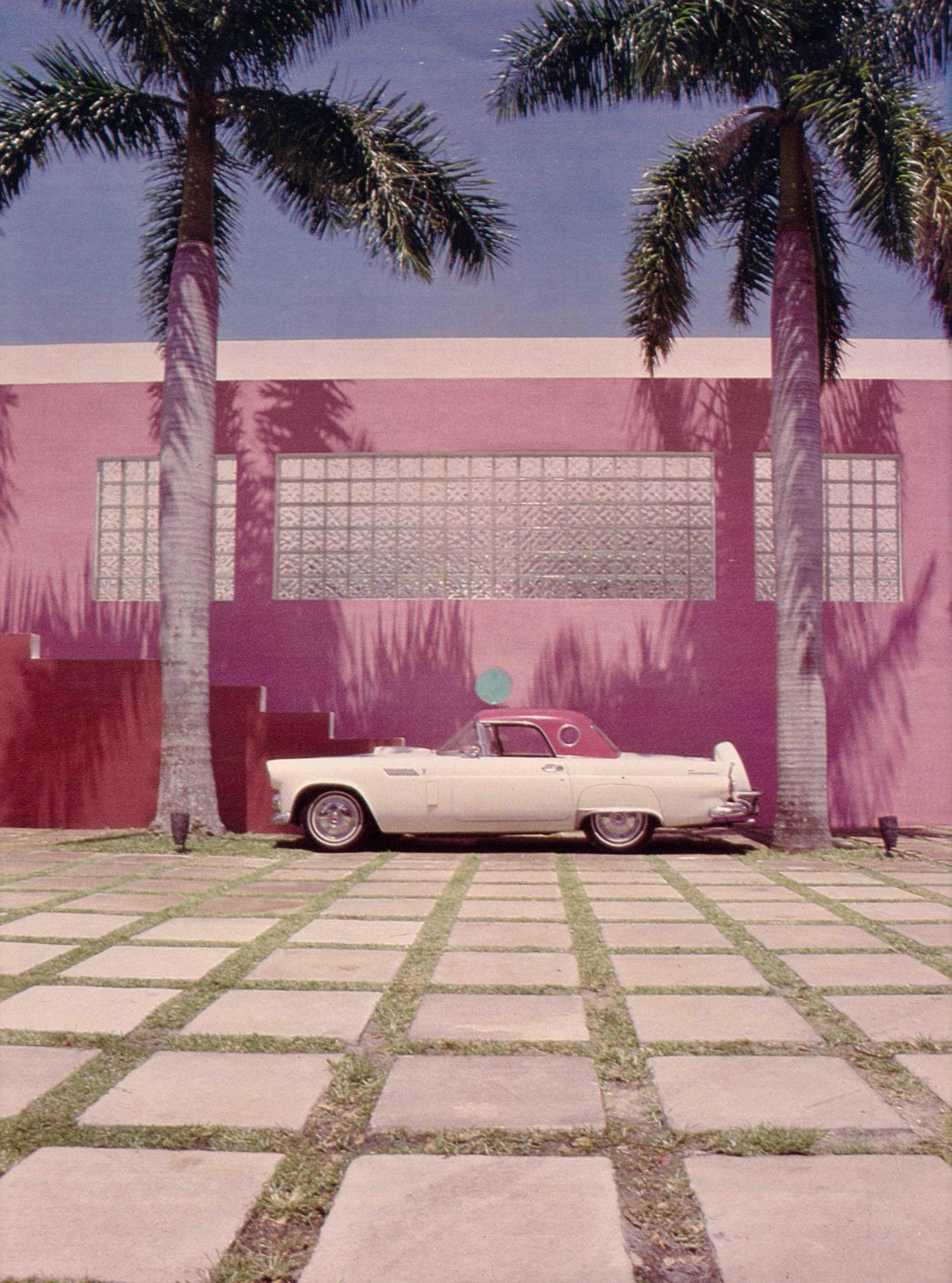 Alastair Gordon | Wall to Wall